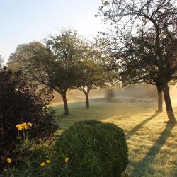 Jardin au lever du soleil